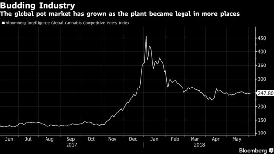 Wall Street's Cannabis Investments Stay Hush-Hush Due to Stigma