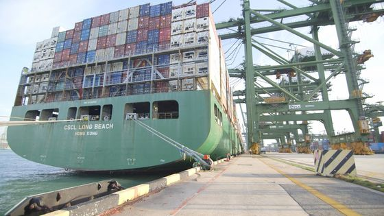 Global Shipping Turmoil Expected to Calm Down by Mid-Year