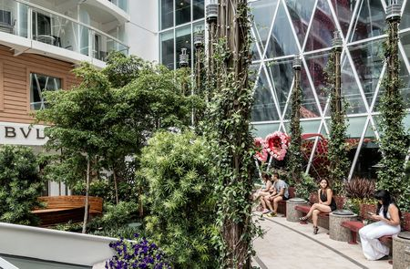 The ship's Central Park neighborhood—an open-air section in the center of the ship—is a key design feature, with some 12,000 live plants in a meandering garden than spans more than thelength of a football field.