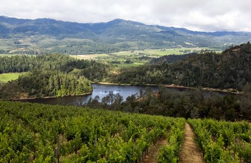 Viader Vineyards