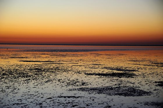 Coal-Loving Australia Rejects Green Hub on Environment Risks