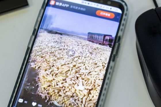 Traders Are Paying Close Attention As Farmers Become Live-Streaming Stars