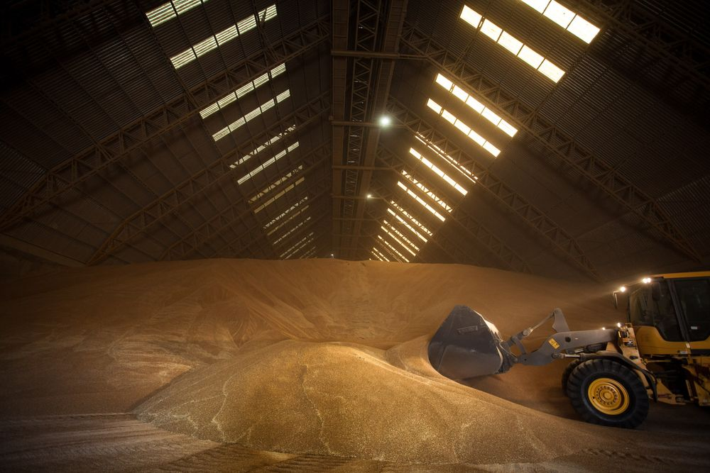 Argentina Is Considering Reinstating Taxes on Crop Exports