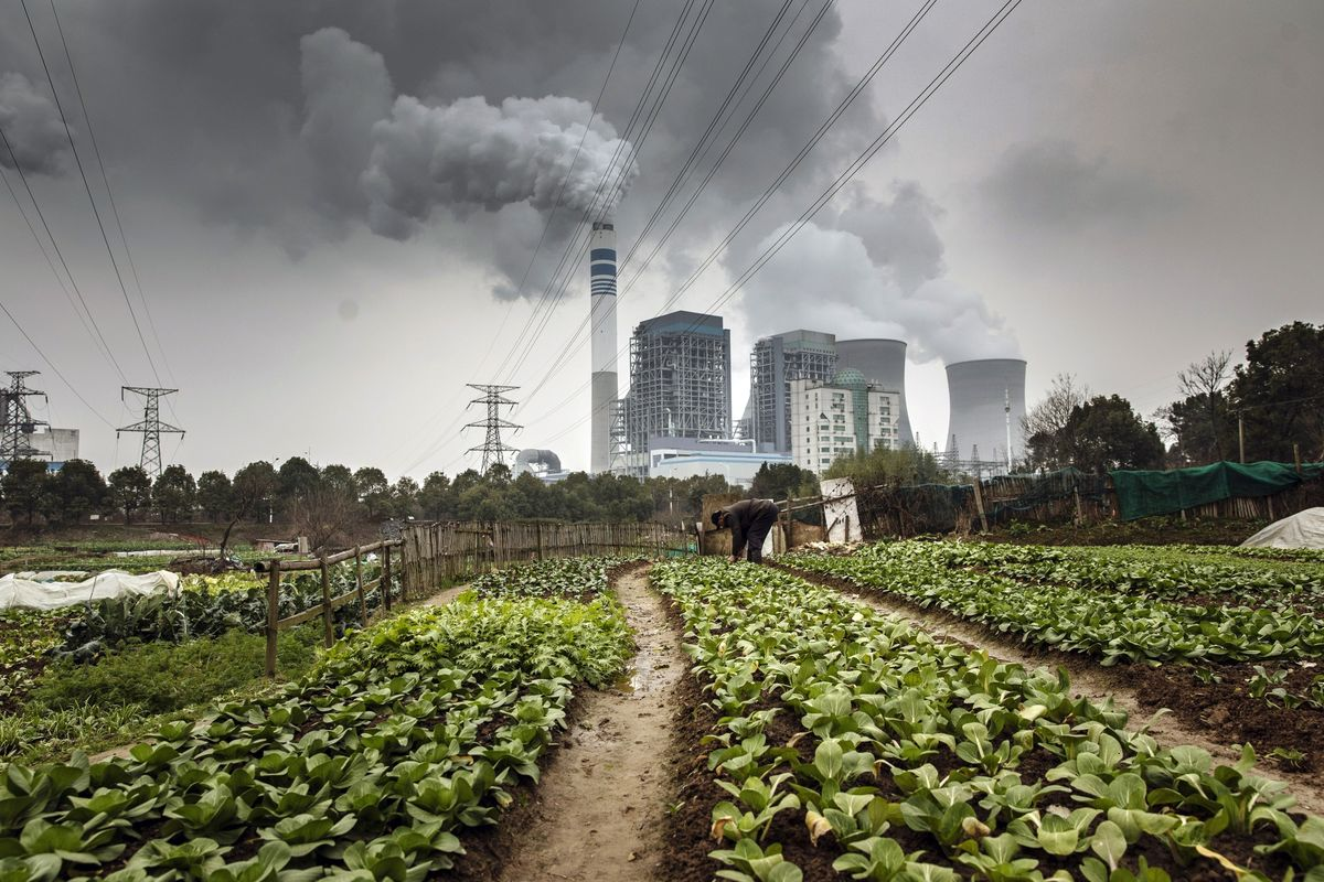 Virus Cuts China's Carbon Emissions by 100 Million Metric Tons