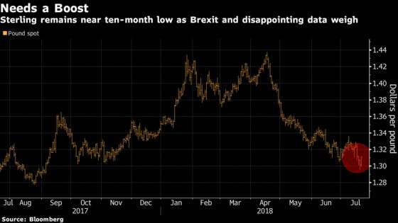 Pound Traders Tested by Brexit May Have to Wait for Summer Break