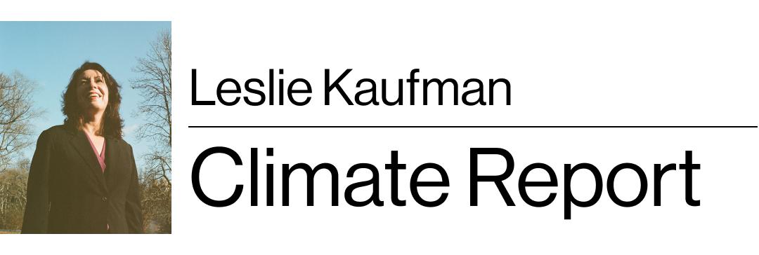 Leslie Kaufman's Climate Report