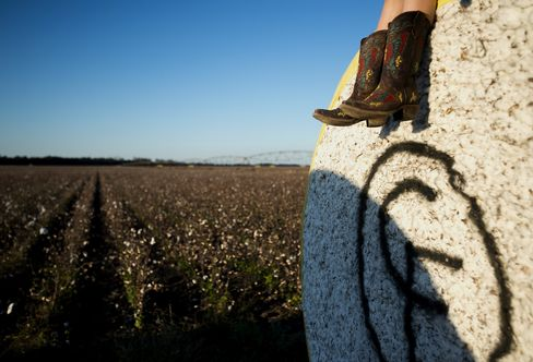 U.S. Cotton
