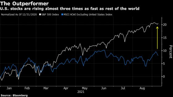 Mr. Greed & Fear Sees Both Playing Out in Gravity-Defying Rally