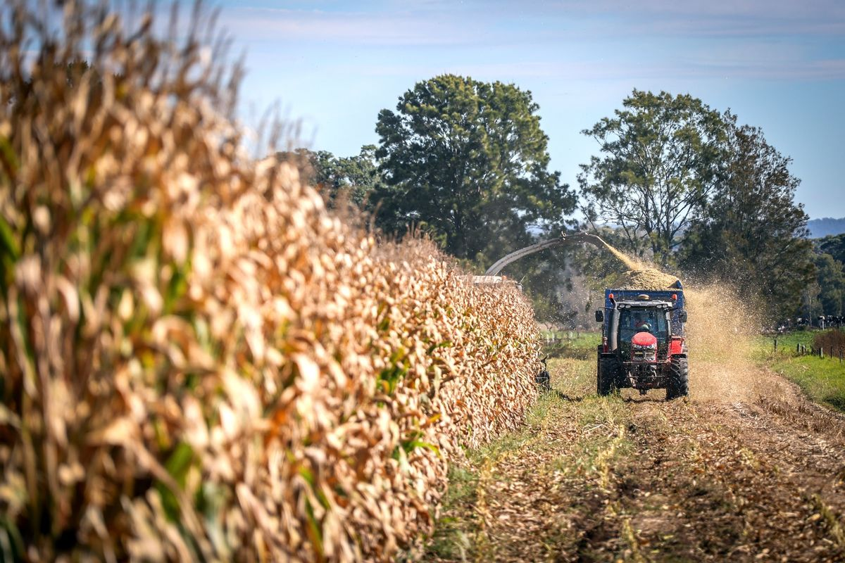 Australia's Pandemic-Hit Farms to Reach Out to Asia for Labor