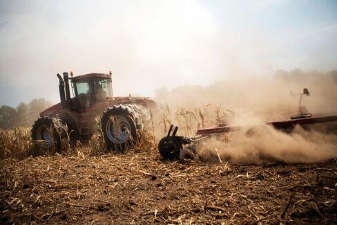 Record Drought Won't Hurt Farm Profits