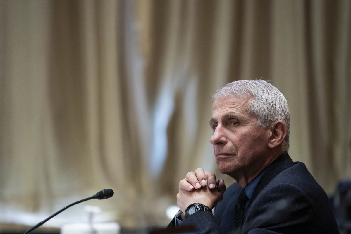 Fauci Says Biden Team 'Pleading' With Americans to Get Vaccines