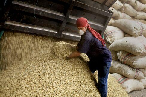Coffee Supply Crunch Spurs Rally