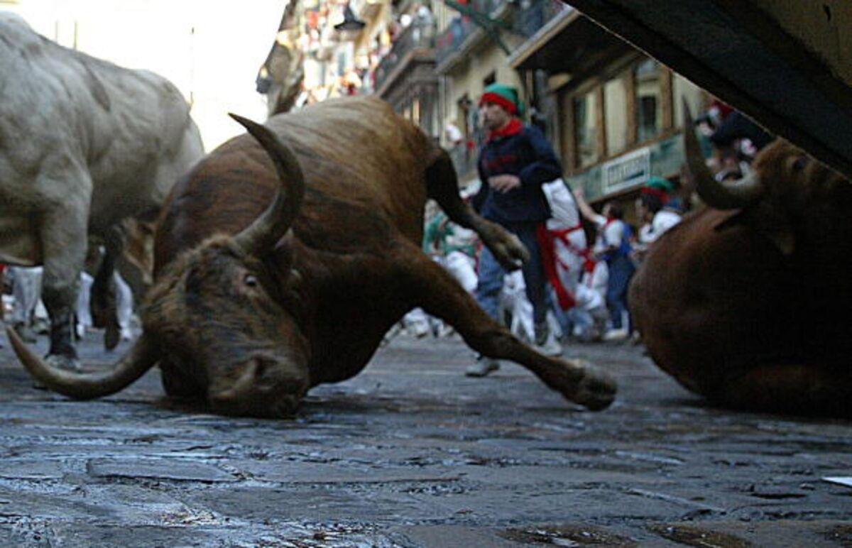 Households Won T Trip Up The Bull Market Bloomberg