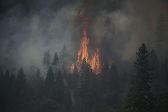 PG&E Says New Power Shutoff Protocol May Avert Dixie-Like Fires
