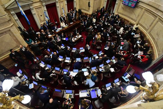 Argentina Senate Rejects Abortion Bill Following Heated Debate