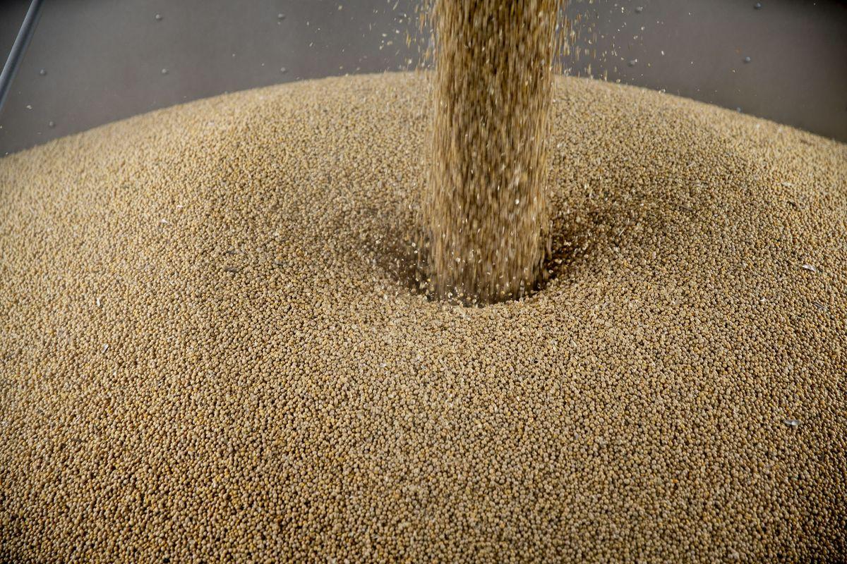 Soy Boom State Finds Itself in Eye of Trade Storm