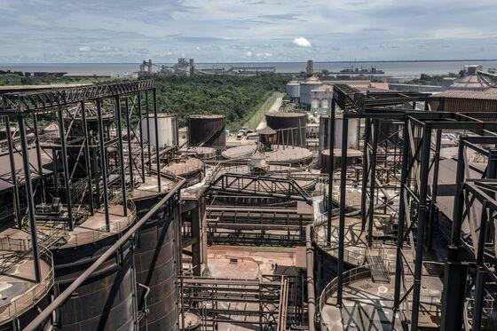 A Hard Rain, Dead Chickens, Lost Jobs: Brazil's Sad Alumina Saga