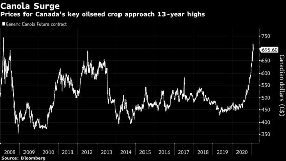 China Buying Spree Stokes Shortage Fears for Top Canola Supplier