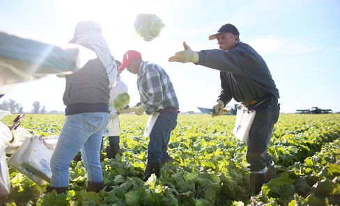 1487139032_us farmer