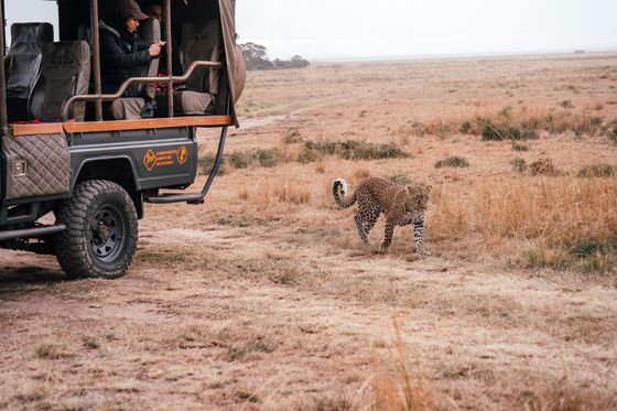 Solar-Powered 4x4s Are Totally Transforming Safaris