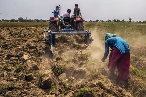 Land plowed by a tractor on a farm on the outskirts of Meerut, Uttar Pradesh, India.