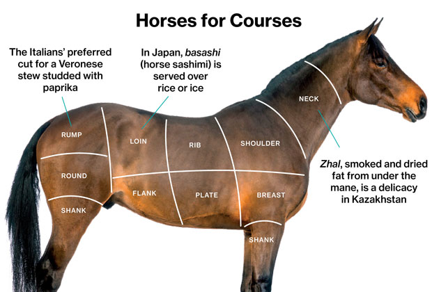 A Slaughterhouse for Horse Meat Waits in New Mexico - Bloomberg