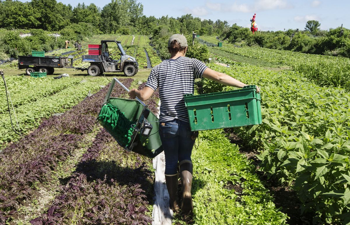 Trudeau Earmarks Billions for Farmers After Trade Concessions