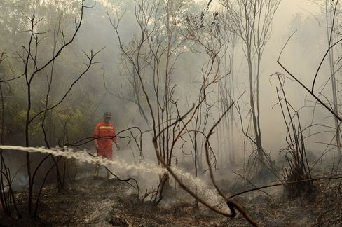 An Indonesian firefighter surveys burning peat land in in the Kapuas district in Central Kalimantan province on Borneo island.