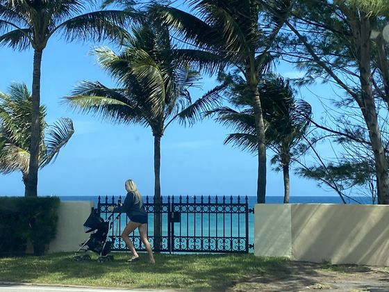 Wall Street A-Listers Fled to Florida. Many Now Eye a Return