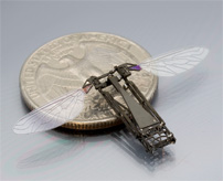 It takes a week to assemble a RoboBee by hand—and a fraction of a second by pop-up folding fabrication