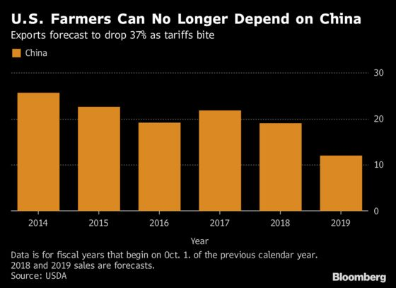 U.S. Farm Trade Surplus to Shrink as Chinese Tariffs Bite