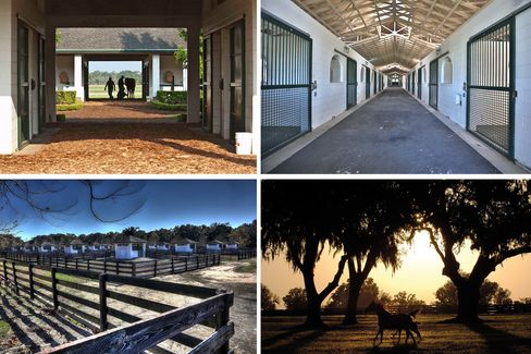 "Clockwise from top left: A Farrier shoeing a horse in the training barn; the interior of the 22-stall mare/foaling barn; the 20 ""Fibar"" pens each with individual .30-acre paddocks; a mare and foal running the paddock."