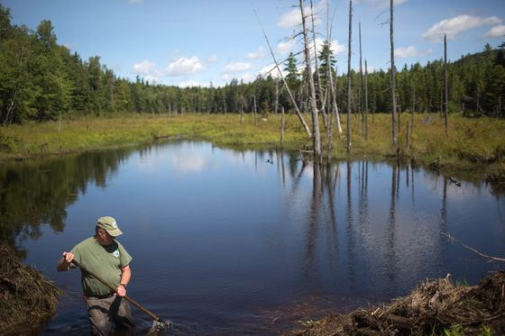 Buying 87,000 Acres of Land Was Easy. Giving It Away Was a Lot Harder