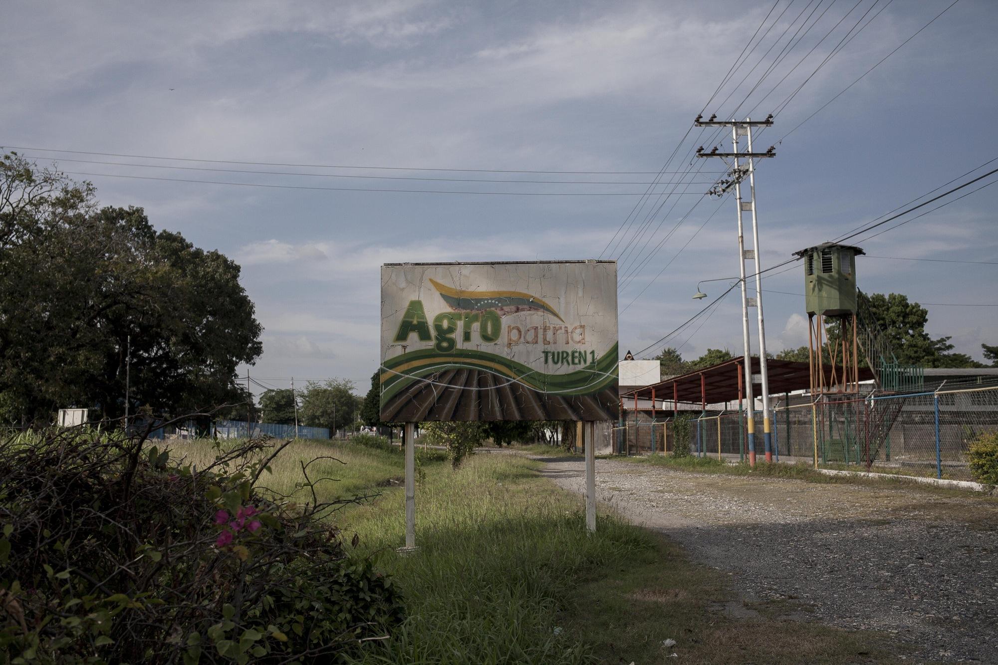 Campos de otoño de Venezuela en la crisis agrícola de la nación