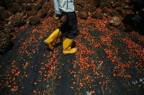Malaysia's Palm Oil Futures Extend Losses