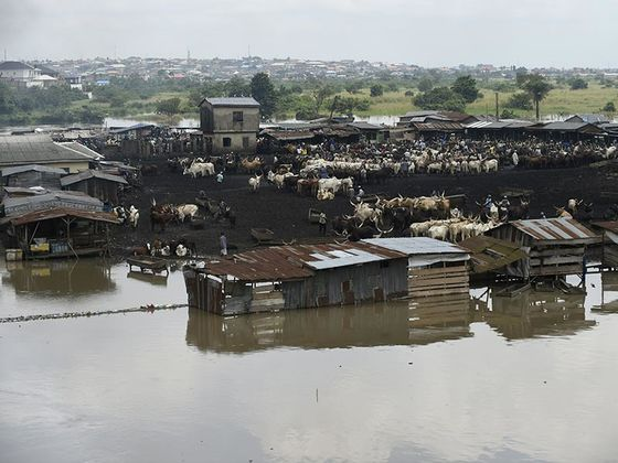 Nigeria Flood Deaths Rise to 199 as Heavy Rains Wreak Havoc