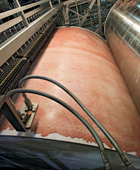 Sheets of 'lean finely textured beef' on the factory's 14-foot drums