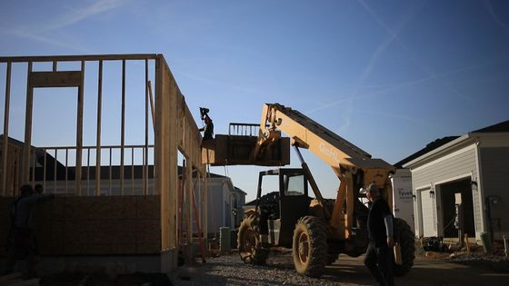 U.S. Lumber Importers Drive Buying Mania for European Wood