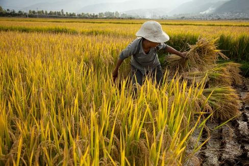 Is Land Reform Finally Coming to China?
