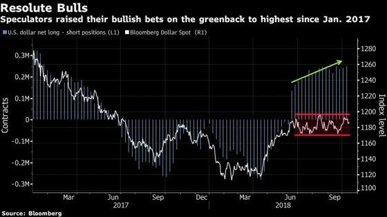 Dollar Bulls Dig In, Raise Bullish Bets to 21-Month High: Chart