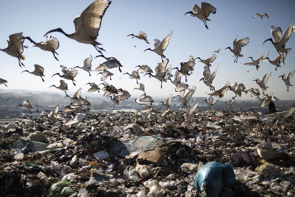 How the World Can Solve Its 2-Billion-Ton Trash Problem