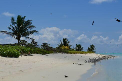 Thebeach on Helen Island, Hatobei, Palau on June 11 2012.Photographer: Mike Di Paola