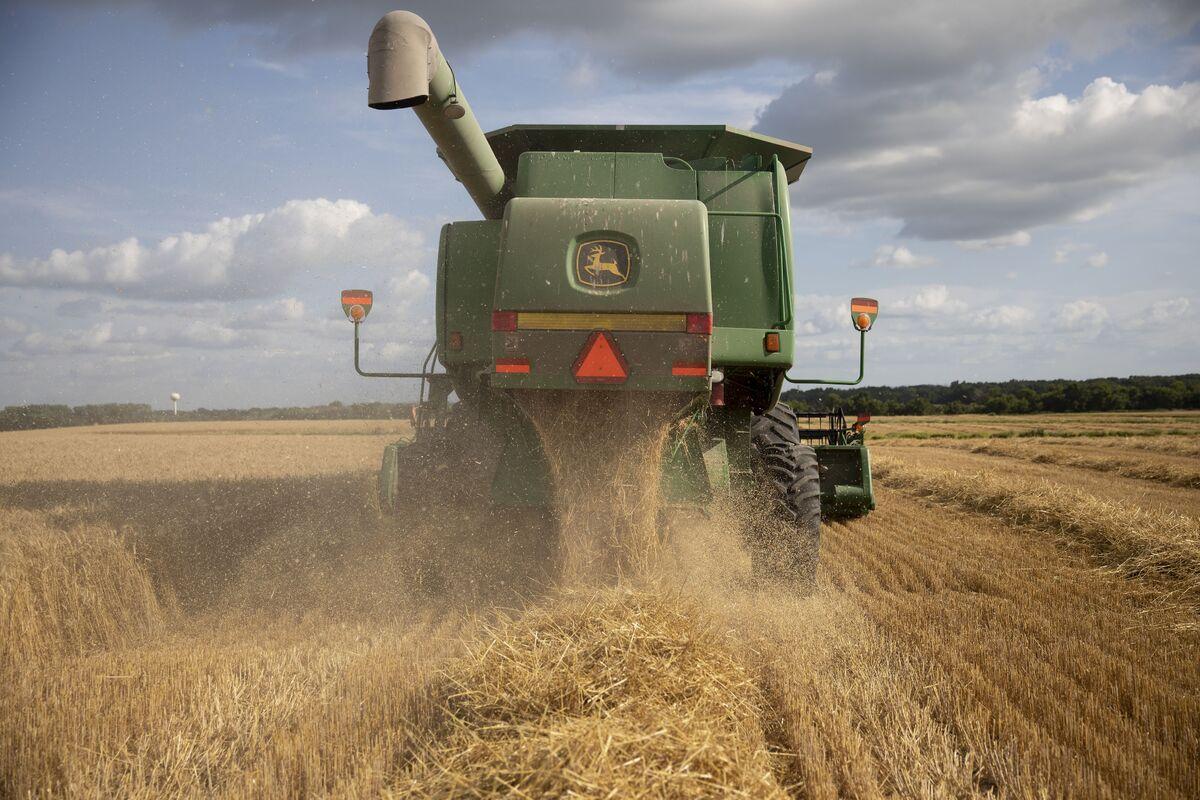 China Takes On Trump by Weakening Yuan, Halting Crop Imports