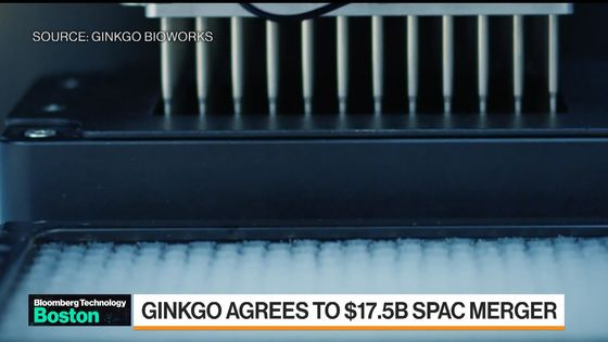 Ginkgo Agrees to $17.5 Billion Merger With Harry Sloan SPAC
