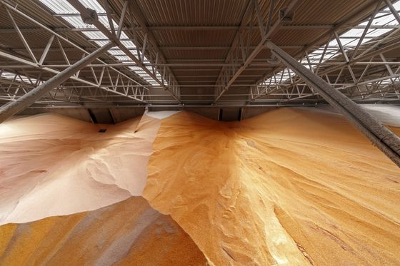 Commodity Traders Harvest Billions While Prices Rise for Everyone Else