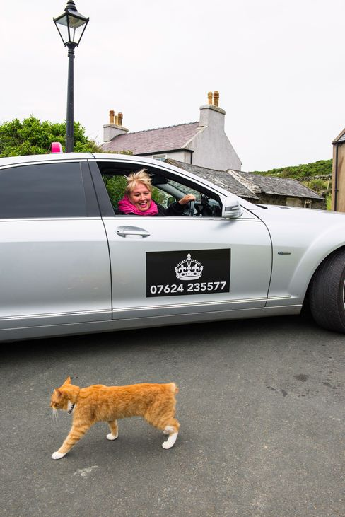 A car service called The Lady Chauffeurs accepts bitcoins, one of a few island businesses that do; Manx cats, a domestic breed that originated on the island, lack tails.