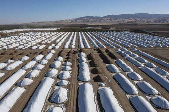 Climate Change IsAlready ShockingOur Food Chain