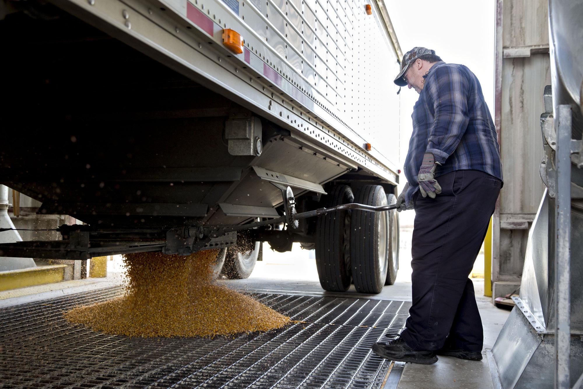 A truck driver unloads corn at the Archer-Daniels-Midland Co.grain facility in Mendota, Illinois.