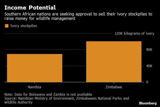 Why Southern African Nations Are So Concerned About Elephants