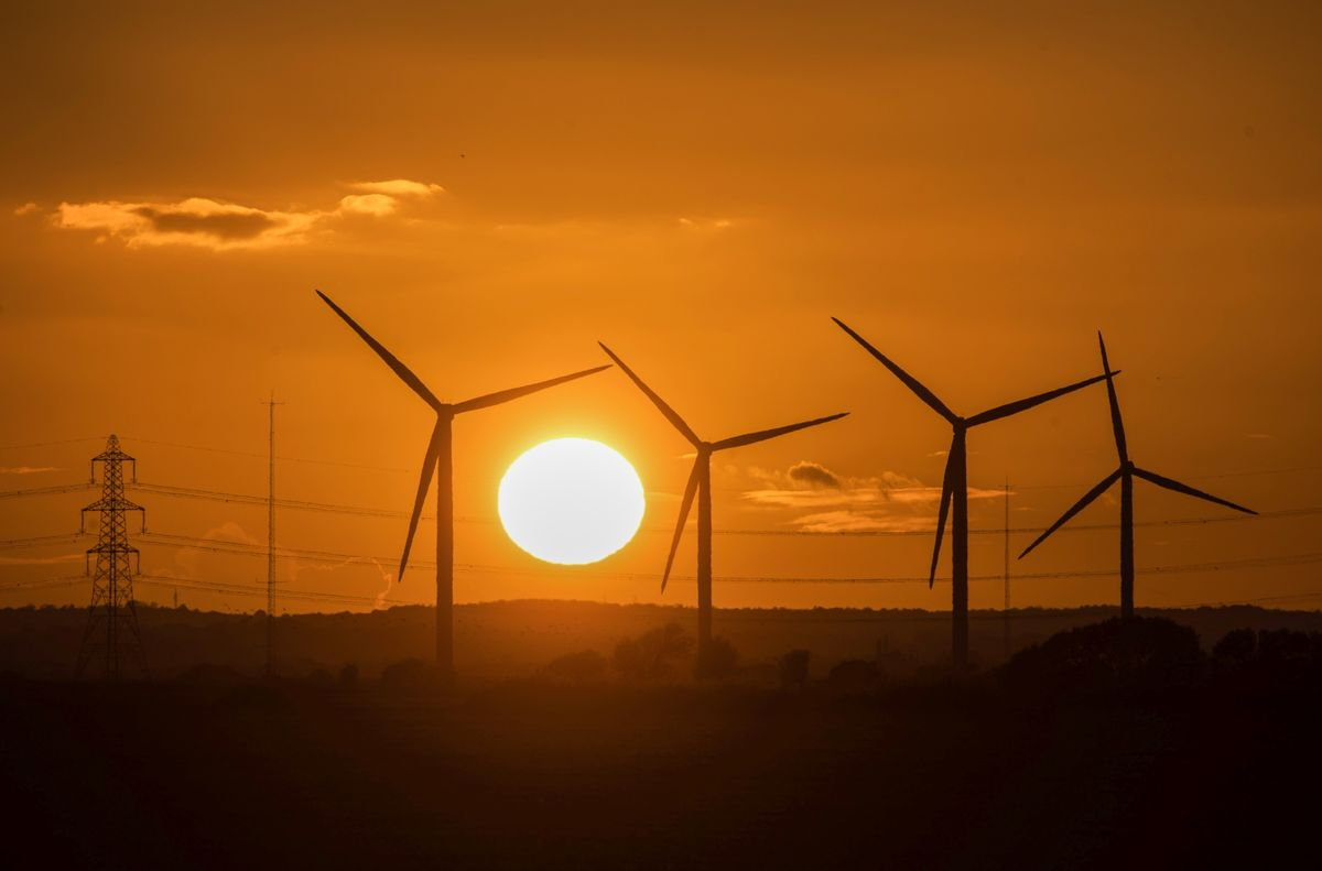 Why Bonds Good for the Earth Now Carry a 'Greenium'